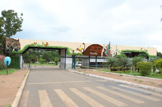صور من حديقة حيوان برازيليا في provided-by-zoo-bras