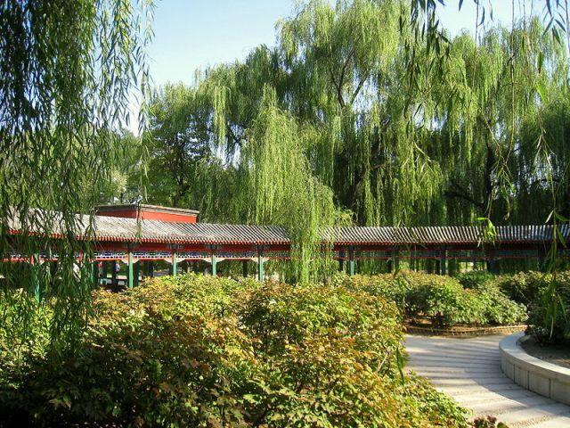 800px-Beijing_Zoo_-_Oct_2009_-_IMG_1213