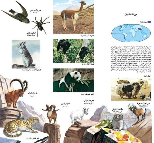 حيوانات مناطق الحشائش الطبيعية -الجبال